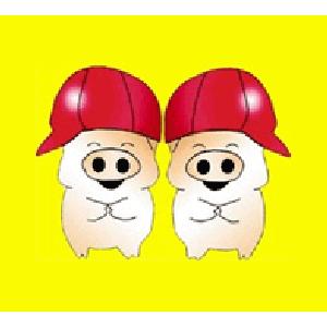 雙胞胎(集團)股份有限公司